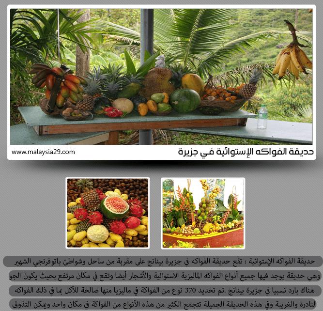 اهم الاماكن السياحية في جزيرة بينانج ماليزيا (2)