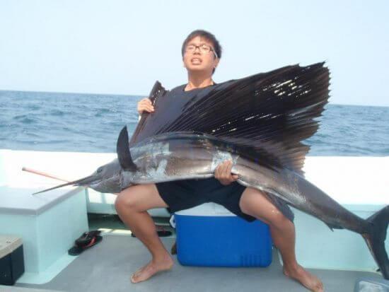 سمكة مارلين